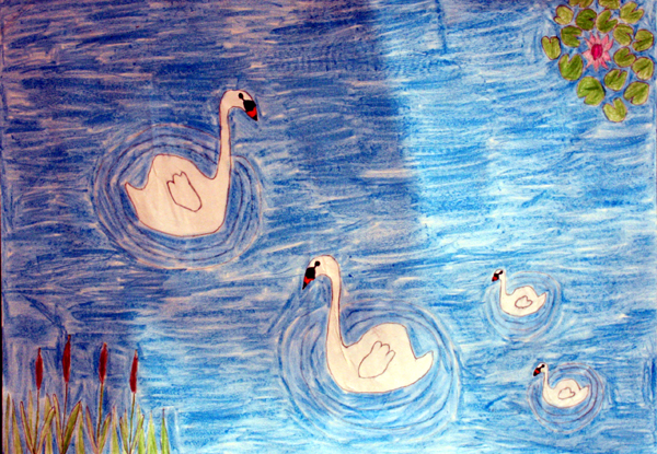 Schools-2011-Cat-A-012_swan_family