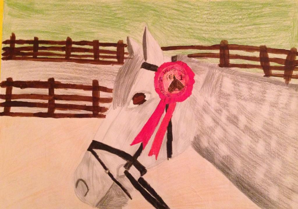 Champion Jumper by Amanda Dunne 3rd year Colaiste Treasa
