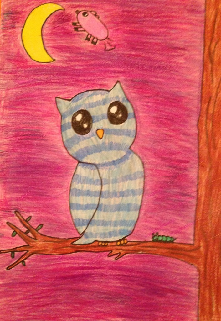 Moonlight Owl by Lauren Mawhinney 4th Class Kilbrin N.S.