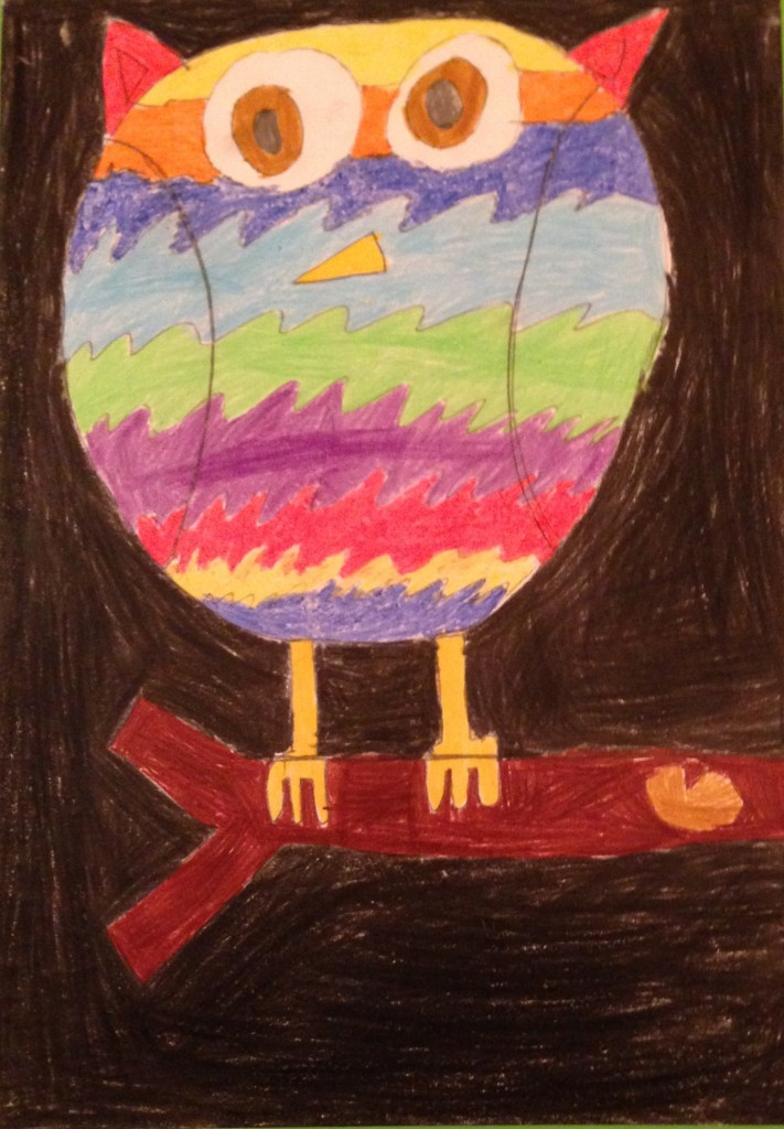 """Poppy The Owl"" by Maya Mannion 1st-2nd Class Banteer N.S"